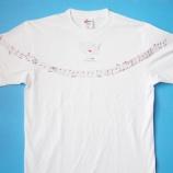 『ブログ「裸体像Tシャツ計画~オクラホマミキサー」その3』の画像