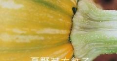 夏野菜の楽しみ方