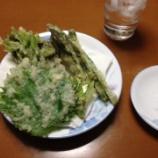 『なんか適当に山菜の料理作るは』の画像