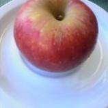『毎朝二個食べてた甘い林檎実験済』の画像