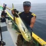 『8月10日 釣果 ジギング・キャスティング』の画像