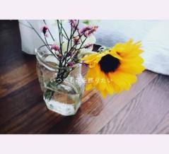 海もプールもフェスもないこの夏に、家の中でも季節を感じられる花を生けたい。