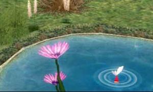 農場の池にハスの花が咲いた!?