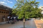 河内磐船駅では多数の人の姿。JR学研都市線『レール温度の上昇』で運転見合わせ中〜7月14日18時現在〜