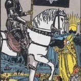 『【セミは食べないよ】死のカードの意味を正しく捉えよう』の画像