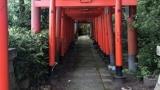 すんごい鳥居の神社にきたwww(※画像あり)