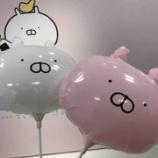 『【うさまる5周年!】うさまらー感謝祭にいってきた!【おめでとうございます!】』の画像