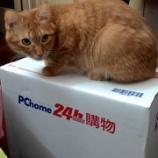 『PChomeそれは台湾のAmazon』の画像