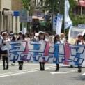 2014年横浜開港記念みなと祭国際仮装行列第62回ザよこはまパレード その22(ヨコハマカワイイパレード)の1