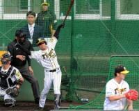 阪神・飯田がフリー打撃初登板 力強く左腕振る