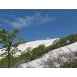 『月山スキーキャンプ2期&レーサーズキャンプ終了。今週も青空と緑の月山!』の画像