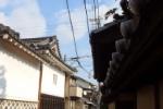 今なお江戸時代っぽい雰囲気がある『代官屋敷』あたり~インサイト交野No.112~