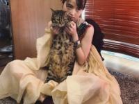 【元乃木坂46】伊藤万理華 with キャット