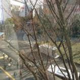 『東京ステイ⑤~三鷹の森のジブリ美術館に行くなら、宿泊は「ホテルメッツ武蔵境」がおススメ☆』の画像