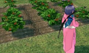 浪漫農場に畑を作ってみよう♪ 楽器演奏で育つ農作物