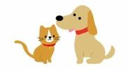「普段は家にいない飼い主がいつもいること」でストレスを感じる犬猫もいるらしい
