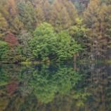 『秋の池』の画像