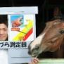 あなたの「馬面」度、測定します…マザー牧場でイベント、「うまヅラ」に分類された人には認定証とニンジンをプレゼント(写真)