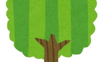 妄想が捗りそうな奇妙な木が話題に!!一体何が起きたんだよこれ