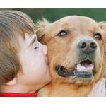 動物愛護ってすごい傲慢な言葉だよな