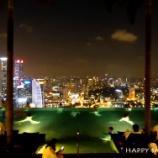『シンガポール1日目₍前泊₎』の画像