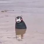 【動画】中国、重慶が水没…、そして「くまモン」も漂流…、その様子が切ない…。