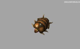 Haladoon's Bugs