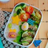 『夏野菜たっぷりのうさちゃんキャラ弁』の画像