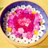 『宮古島旅行2017春:ユートピアファームのパーラー』の画像