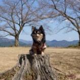 『竹田城跡へ行って来ましたっ! 📝』の画像