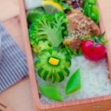 『くるりんきゅうりのお弁当』の画像