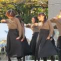 第61回東京大学駒場祭2010 DFVダンスステージ その1