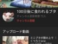 【画像】100日後に食われるブタ、爆誕wwwww(画像あり)