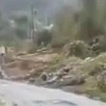 【動画】中国、山道を走る満載の大型トラック、曲がりきらずに谷に転落!その瞬間