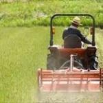 【悲報】農業系公務員俺氏、ガチのマジで毎日が辛過ぎてヤバイ模様wwwww