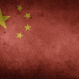 【閲覧注意】中国の闇が深い動画