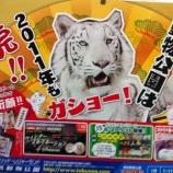 『(番外編)東武動物公園は 2011年も 虎!!』の画像
