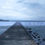 『【釣り】水曜の藤田』の画像