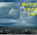 都心の空に「虹色の雲」、短時間で2回現れる 珍しい現象