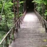 『【日本最恐の心霊スポット】 山梨の花魁淵伝説』の画像