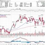 『【TSLA】テスラ株、SECの早すぎる提訴で株価暴落【グロース株の末路】』の画像