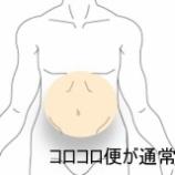 『コロコロ便の悩み 過敏性腸症候群 室蘭登別すのさき鍼灸整骨院 症例報告』の画像