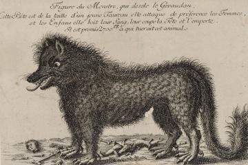 ジェヴォーダンの獣の正体とは・・・ ジャン・シャステルなのかそれとも猛獣なのか議論
