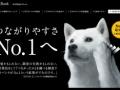 【悲報】 前田敦子 「ソフトバンクは繋がりやすさナンバー1です」 → 批判殺到