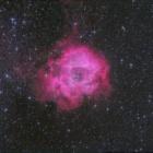 『バラ星雲(2019年2月1日)』の画像