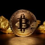 『【朗報】ビットコインが2万ドルを目指す理由』の画像