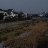 『1月の空堀川;東大和市』の画像