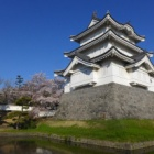 『毎年恒例!のぼうの城と桜(ソメイヨシノ)』の画像