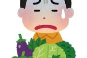 食べ物で嫌いな物あるやつってなんで嫌いになったの?
