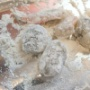 海老のタコス 作り方